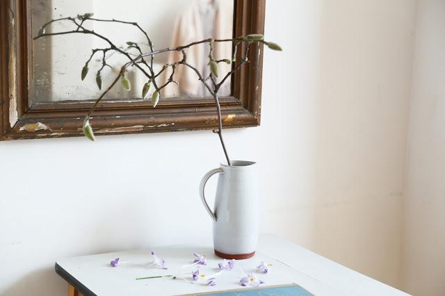 cbc-10-magnolia